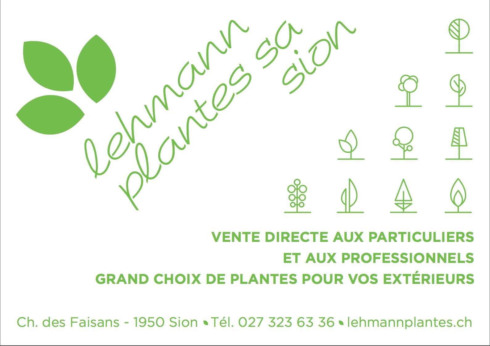 Lehmann Plantes SA